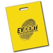 EVIDENT Conference Attendee Bag